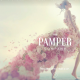 The Pamper Company